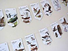Birds paper garland ~ British birds novelty bunting ~ Upcycled birdwatcher gift ~ Eco-friendly tea party ~ Wedding backdrop ~ Twitcher gift