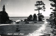 DR JIM STAMPS US HOEFT STATE PARK ROGERS CITY MICHIGAN REAL PHOTO POSTCARD RPPC