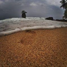 #Caribe #GoPro #goprohero #goprounited #goprobeahero #goprooftheday #goprouniverse #GoProLifeStyle #goproexpeditions #CostaRica #ExpediciónCostaRica #Limón