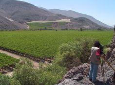Valle de Copiapo