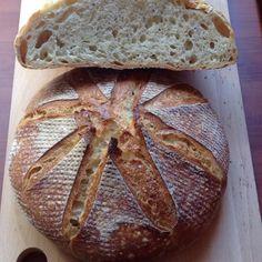 """99 Beğenme, 10 Yorum - Instagram'da Emine Kaya 🙏🌾🌹 (@eminemutfaktaa): """"Bugünkü ekşi mayalılarım. 500 gr organik ekmeklik un 100 gr ekşi maya 340 gr su 1 tatlı kaşığı tuz.…"""""""