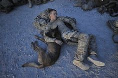 After a five-hour overnight air assault mission, Army Specialist Justin Coletti and his combat tracking dog Dasty grab some winks together.