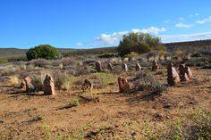 Stone circle, Erynne Ewart-Phipps. katty vandenberghe Land Art, South Africa, Paths, Vineyard, Eagle, Stone, Outdoor, Vine Yard