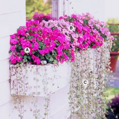 Shade window box by Better Homes and Gardens