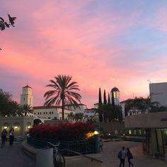 150 Sdsu Aztecs Ideas San Diego State University San Diego Class Of 2016