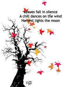 Seasons haiku ...