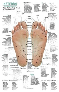 Latissimus Training, Essential Oil Chart, Massage Dos, Foot Massage, Foot Chart, Get Rid Of Warts, Remove Warts, Cervical Cancer, Aromatherapy Oils