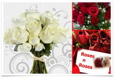 Want to get romantic? Let us give you a hand. This Fabulous Daily Deal from Roses n Roses offers a beautiful Bouquet of 15 ROSES or 15 GERBERAS in a choice of stunning colors at a whopping 50% off. Guys treat your girlfriend, wife, mom or anybody else to a special gift of beautiful flowers and reward yourself with the look on her face and perhaps a kiss too! Make a grab for it before it is too late.   Voucher is valid from 2nd November 2012 to the 2nd January 2013