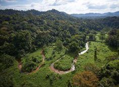 """VIDÉO. Découverte de la """"cité blanche"""" dans la jungle du Honduras?"""