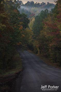 East Texas autumn; © Jeff Parker / ExploreinFocus.com