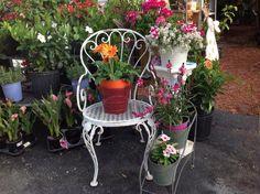 Outdoor Ideas, Planter Pots, Deko, Plant Pots