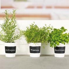 Örtkrukor 3-pack + krita till kryddväxter - Kitchen Store Kitchen Store, Kitchenaid, Nespresso, Planter Pots, Packing, Herbs, Basil, Bag Packaging, Herb