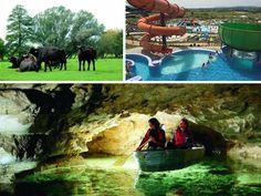 10 nagyszerű program a gourmandkodástól a krokodillesésig arra az esetre, ha a Balatonon köszönt ránk a rossz idő.
