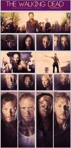 The Walking Dead, Season 3 http://pinterest.com/yankeelisa/the-walking-dead/