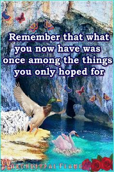 Remember that what you now have was once among the things you only hoped for - GIF Pictures Images, Cool Pictures, Impossible Dream, Everyday Quotes, You Now, Praise The Lords, Inspirational Videos, Joy And Happiness, Love And Light
