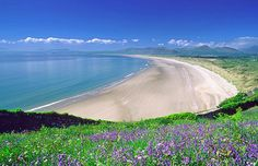 Beautiful sandy beach and clear blue waters, bordered by grass and flowers in Traeth Harlech (Harlech Beach), Gogledd Cymru (Snowdonia, North Wales). Wales Uk, North Wales, British Beaches, Uk Beaches, British Seaside, British Isles, Places To Travel, Places To See, Wales Holiday