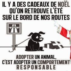 Citations et Panneaux Facebook à partager: L'animal n'est pas un cadeau de Noël