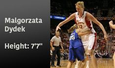 Malgorzata Dydek is the tallest WNBA player ever. Basketball Leagues, Basketball Players, Brittney Griner, Most Popular Sports, Basketball Association, Wnba, World Of Sports, Tall Women, Athlete