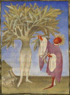 Bibliothèque nationale de France, Français 606 f. 40v. Christine de Pizan. L'Epistre Othea la deesse, que elle envoya à Hector de Troye, quant il estoit en l'aage de quinze ans. Paris, c.1406. 'Apollo and Daphne'.