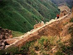 Abramovic, Marina; Ulay, «The Lovers – The Great Wall Walk», 1988