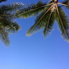 Waikiki Sky