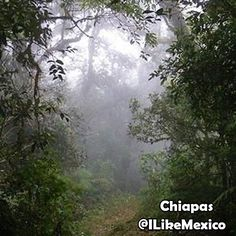 Chiapas, Mex.