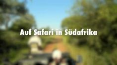 "Video: ""Safari in Südafrika"""