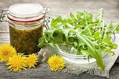 Eating dandelions has many health benefits, and they taste great too. See these 5 delicious dandelion recipes for greens in salads & even fried flowers. Dandelion Coffee, Dandelion Wine, Dandelion Leaves, Dandelion Salad, Superfood, Eating Dandelions, Dieta Dash, Dandelion Recipes, Dandelion Benefits
