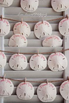 Sweet sand dollars hand-lettered as guest favors