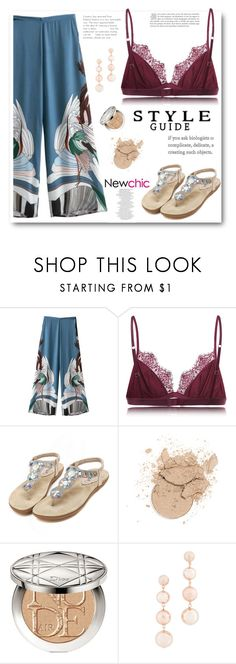 """""""Newchic 11"""" by edy321 ❤ liked on Polyvore featuring Christian Dior and Rebecca Minkoff"""