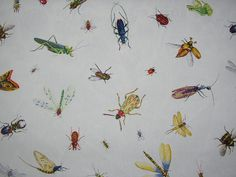 Duralee #21027 Insecta Imperalis #18 white Fabric
