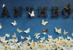 Every year around this time at Anthropologie, our windows celebrate some aspect of Earth Day. This year, our windows pay tribute to the perseverance and plight of the monarch butterfly whose habitats are vanishing with increasing climate change and use of herbicides. One butterfly can trave