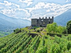 Douro Valley, Domestic Flights, Northern Italy, Lake Como, Grand Hotel, World Heritage Sites, Wine Tasting, Outdoor Activities, The Locals