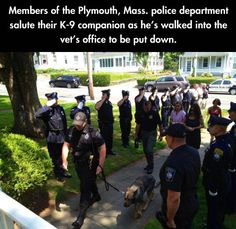 Police saluting senior K9 police dog as he is taken into vet's office for final time. Tear jerker. #dogs #policedog #k9