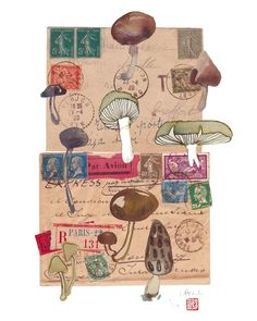 mushrooms on vintage envelopes.