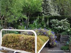 The Garden Bed a partnership with Asda, was designed by Stephen Welch & Alison Doxey, and built by Frosts Landscapes.