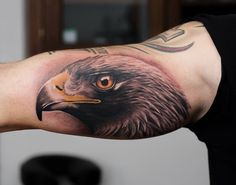Wonderful realistic Eagle head done by Korky. To see more of his work look on our website www.revivaltattoos.co.uk