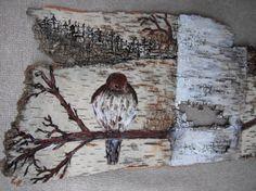 birch bark picture