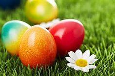 Dyed Easter Egg - Bing Images