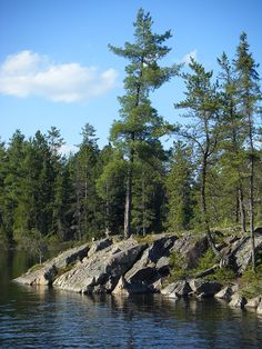 Pines, rocks and water - the perfect combo Landscape Photos, Landscape Art, Landscape Paintings, Get Outdoors, The Great Outdoors, Northern Girls, Montreal Travel, Algonquin Park, Serenity Now
