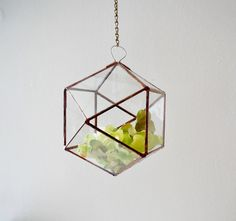 Hanging Glass Terrarium stained glass planter by jacquiesummer, $56.00