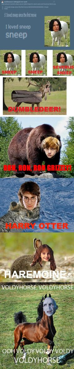Funny pictures about Potter Animal Pals. Oh, and cool pics about Potter Animal Pals. Also, Potter Animal Pals. Mundo Harry Potter, Harry Potter Puns, Sassy Harry Potter, Potter Puppet Pals, Harry Otter, Yer A Wizard Harry, Fandoms, Fantastic Beasts, Fangirl