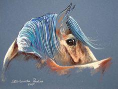 Paulina Stasikowska - horse portrait - Original pastel painting on cardboard - Signed - 2017 Horse Drawings, Pencil Art Drawings, Cool Art Drawings, Dapple Grey Horses, Cardboard Animals, Soft Pastel Art, Horse Wallpaper, Horse Artwork, Creta