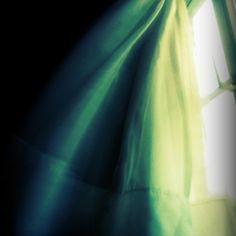 Wind. Curtain. Expressive.