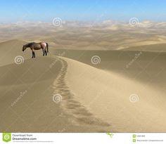 empreintes cheval désert - Recherche Google Recherche Google, Country Roads, Mountains, Nature, Travel, Horse, Naturaleza, Trips, Traveling