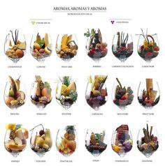 ¿Y si viéramos los olores? Representación visual de cada tipo de uva