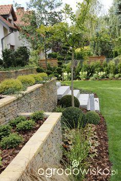 ogrodowisko zimozielony ogród przy białym domu - Szukaj w Google