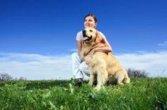 Terapias Naturales para Mascotas http://www.mascotadomestica.com/articulos-sobre-mascotas/terapias-naturales-para-mascotas.html