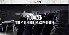 Modazen Web Design http://www.modazen.com/