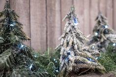 Collezioni Natale 2017: decorazioni, confezioni regalo, nastri, oggettistica per vetrine e negozi, scatole per panettone e bottiglie, alberi e luci LED.